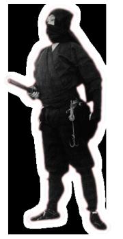 Shinobi ou Ninja, ninjas, ninja, nin jutsu, ninjutsu paris, nin jutsu paris, bujinkan, bujinkan paris, ninja paris