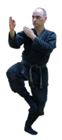 ICHO NO KAMAÉ, Le Dojo, dojo, budo, bushi, samourai, ninjas, ninja, nin jutsu, ninjutsu paris, nin jutsu paris, bujinkan, bujinkan paris, ninja paris