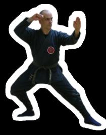 DOKO NO KAMAE, Le Dojo, dojo, budo, bushi, samourai, ninjas, ninja, nin jutsu, ninjutsu paris, nin jutsu paris, bujinkan, bujinkan paris, ninja paris, tigre en colère, dokko