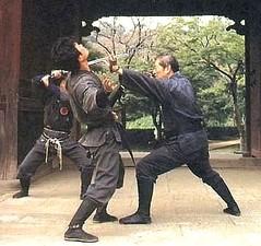 Démonstration de Nin Jutsu par Hatsumi sensei, Le Dojo, dojo, budo, bushi, samourai, ninjas, ninja, nin jutsu, ninjutsu paris, nin jutsu paris, bujinkan, bujinkan paris, ninja paris