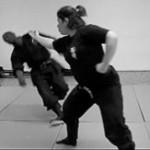 Goggyo : Sui no Kata, Gogyo, Godai, Le Dojo, dojo, budo, bushi, samourai, ninjas, ninja, nin jutsu, ninjutsu paris, nin jutsu paris, bujinkan, bujinkan paris, ninja paris