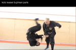 Teaser Koto Ryu en Nin Jutsu