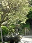 Jardin au Japon